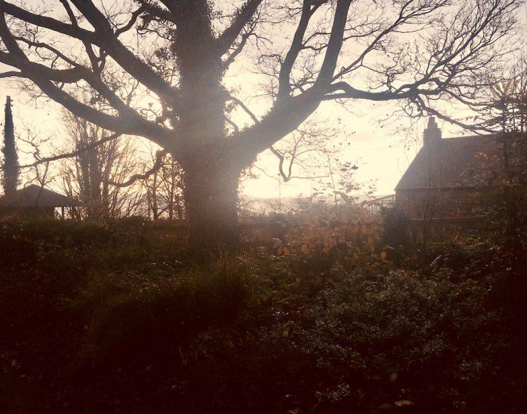 Cottage at sunrise