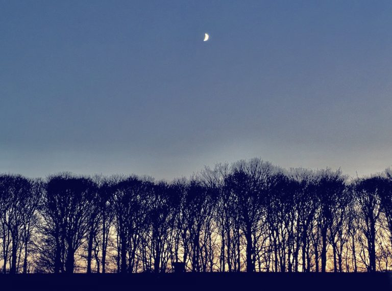 Wintry sky and crescent moon
