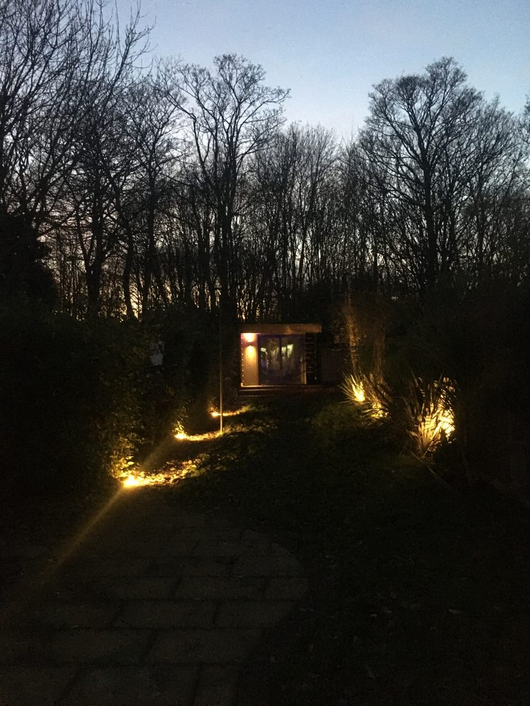 garden with lights at night