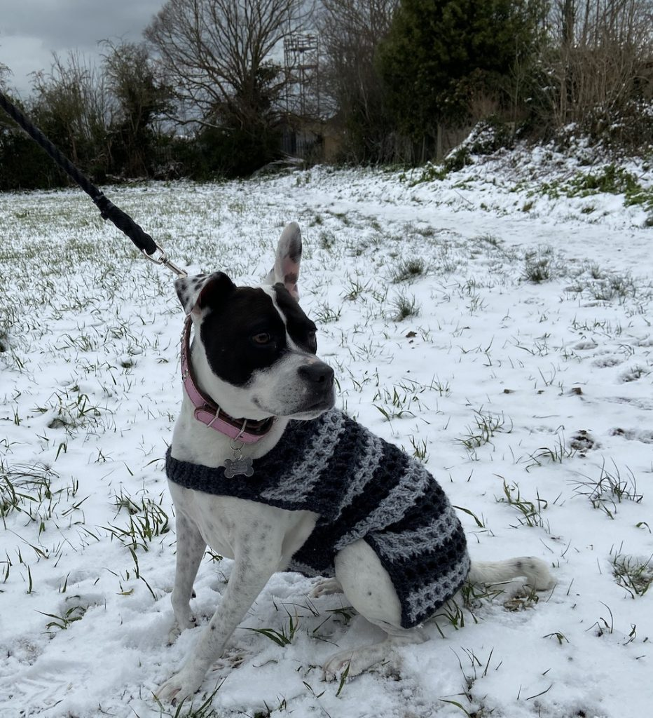 Lily's blanket style coat
